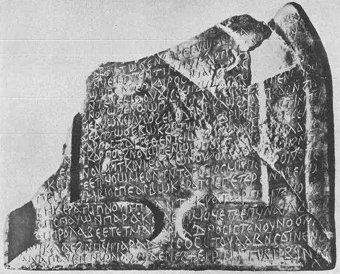 Drosis stela (Cramer no6)